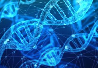 DNA Kurs